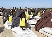 Terrorism case worries Finnish Somali community